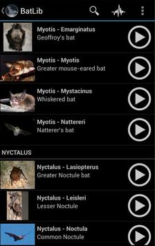 BatLib - Bat calls apk screenshot