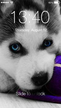 Hucky Dog HD Lock poster