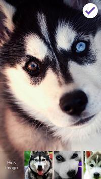 Hucky Dog HD Lock apk screenshot