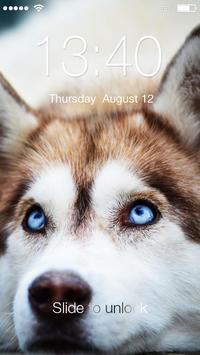 Husky Dog Lock poster