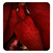 Jack's Heart icon