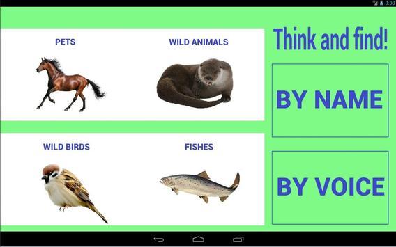 Animals world for kids poster