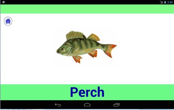 Animals world for kids apk screenshot