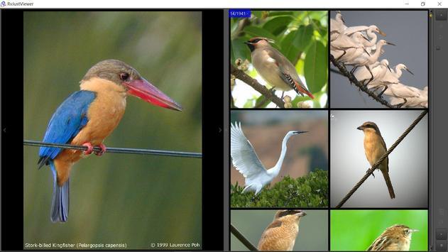 RvJustViewer screenshot 1