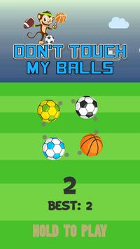 Don't Touch My Balls poster