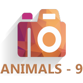 HD Duvar Kağıdı (Animals-9) icon