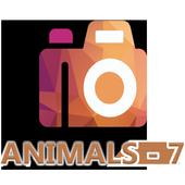 HD Duvar Kağıdı (Animals-7) icon
