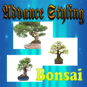 Advanced Styling Techniques of Bonsai icon