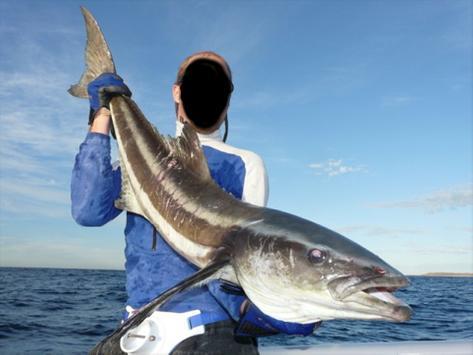 Awesome Fishing Photo Creator screenshot 12