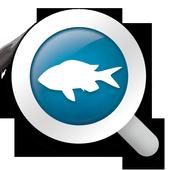 BiodiverSea - free version icon