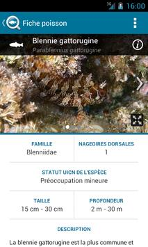 BiodiverSea - free version screenshot 4