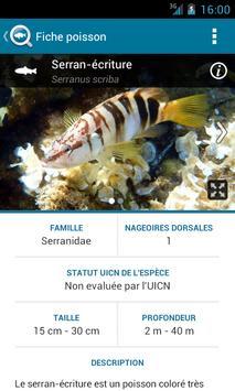 BiodiverSea - free version screenshot 3