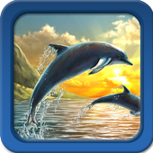 Dolphin Live Wallpapers icon