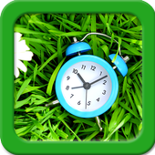 Flower Clock Live Wallpapers icon