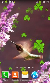 Hummingbirds Live Wallpapers screenshot 4