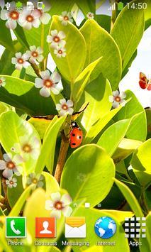 Ladybug Live Wallpapers apk screenshot