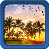 Palm Tree Live Wallpapers icon