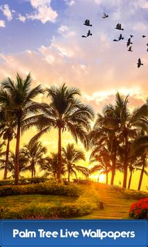 Palm Tree Live Wallpapers poster