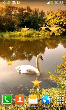 Swan Live Wallpapers apk screenshot