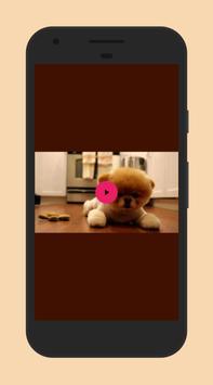 Gallery apk screenshot
