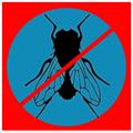 Anti Fly Prank Free