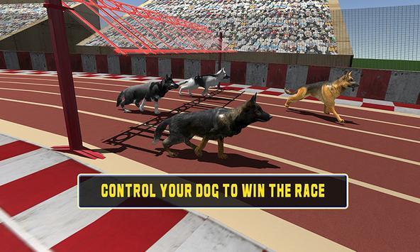 Crazy dog racing apk screenshot