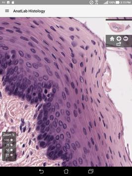 AnatLab Histology screenshot 12