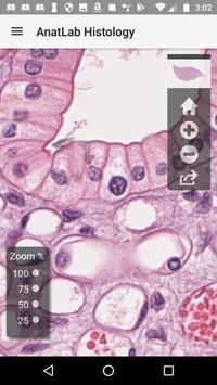 AnatLab Histology screenshot 3