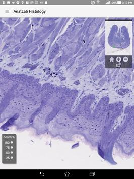 AnatLab Histology screenshot 6