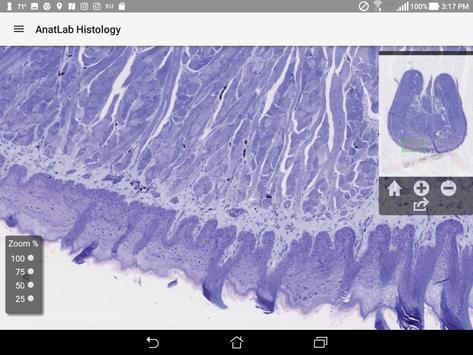 AnatLab Histology screenshot 7