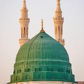 Sultan icon
