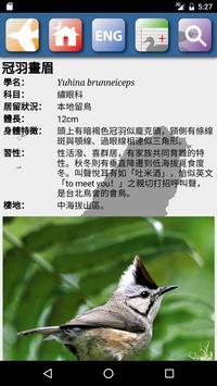 臺灣鳥類 apk 截圖