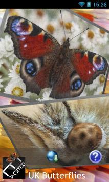 eReca Butterflies (UK) poster