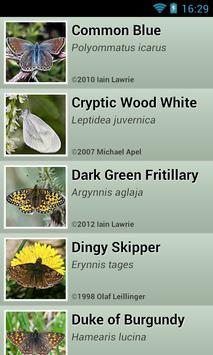 eReca Butterflies (UK) apk screenshot