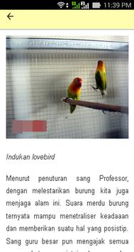 Kisah Sukses Dan Tips Breeding apk screenshot