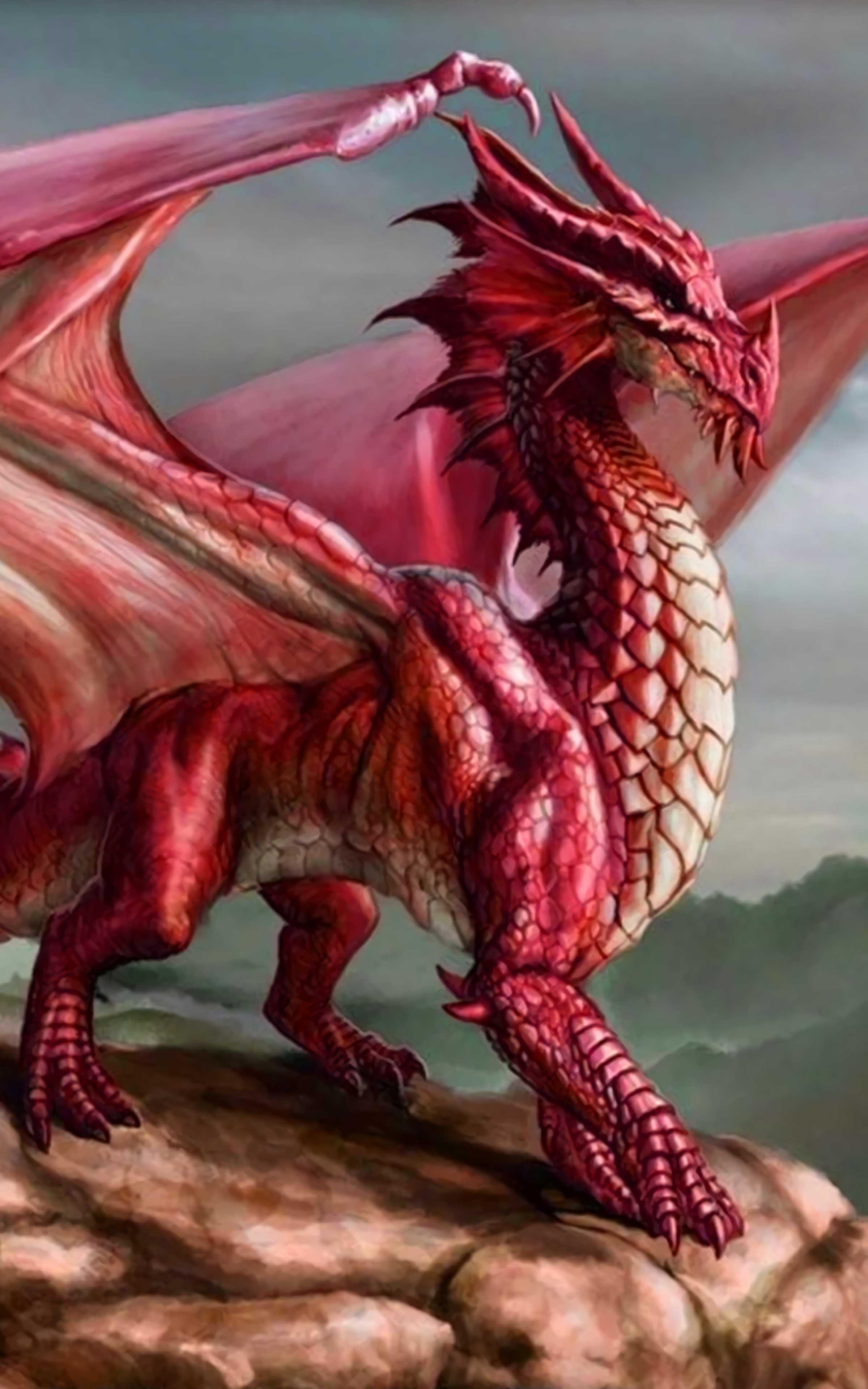 Dragon Wallpaper Best Cool Dragon Wallpapers For Android