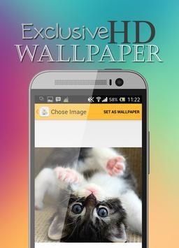 Cute Cat HD Wallpaper apk screenshot