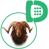 Meat & Adahi Delivery icon