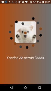 Cute dogs wallpaper apk screenshot