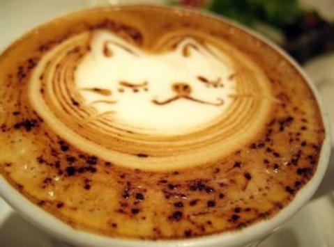 Espresso coffee apk screenshot