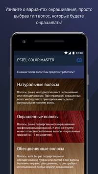 ESTEL Color Master poster