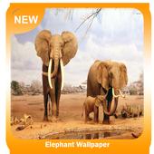 Elephant Wallpaper icon