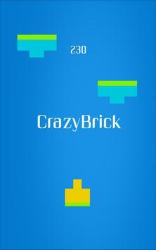 CrazyBrick poster
