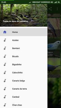 Uirapuru Passaros Brasileiros screenshot 1