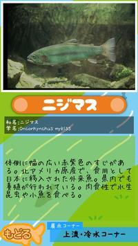 がんばれ!ムートくん【さいたま水族館公式アプリ】 screenshot 4