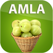 Benefits of Amla icon