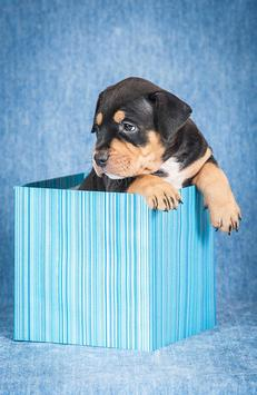 Rottweiler Tile Puzzle poster