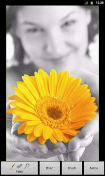 Photo Art - Color Effects poster