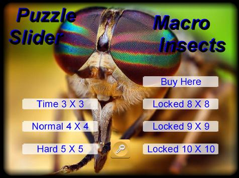Puzzle Slider Macro Insects poster