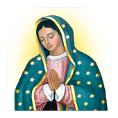 Novena Our Lady of Guadalupe icon